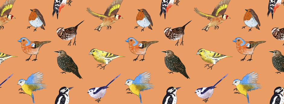 British Bird pattern sarah cochrane website