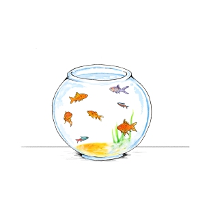 fish bowl illustration 1